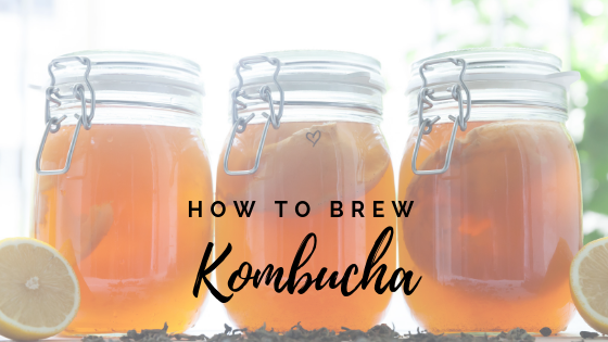 Kombucha – How to brew your own